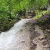 brunnenstein_01-06-13_13-juergen-fodor