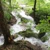 echazfohner_01-06-13_05-juergen-fodor