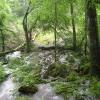 uracherwasserf4-andreas-laenge