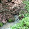 wadelbrunnenschacht-andreas-scheurer