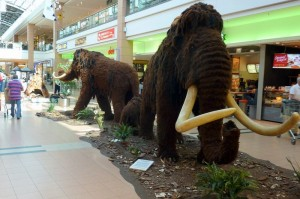 Mammutausstellung Blautal-Center Ulm